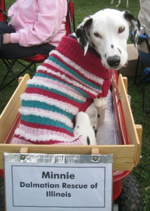Minnie in her wagon
